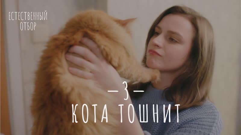 Естественный отбор 3 Кота тошнит