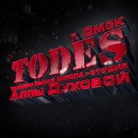 Логотип TODES ОМСК
