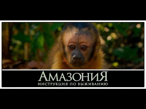Тимур Родригез озвучивает мысли обезьяны Амазония Инструкция по выживанию Трейлер