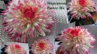 Мк Георгин кактусовый из фоамирана Dahlia cactus from foamiran