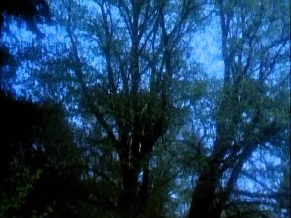 Музыка и кадры из фильма Робин из Шервуда