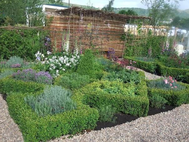 Садик пряных трав Пряные травы - не только поставщики ароматной витаминной зелени к вашему столу, но и подлинное украшение вашего сада. Особенно если учесть, что они стартуют ранней весной