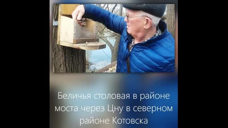 Бельчатник в г. Котовске