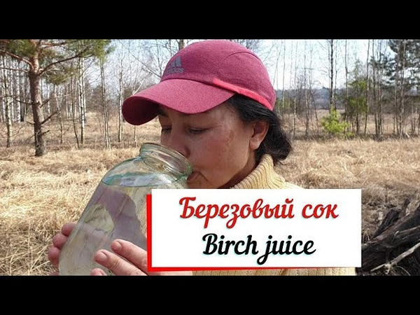 Березовый сок Вкус детства Birch juice
