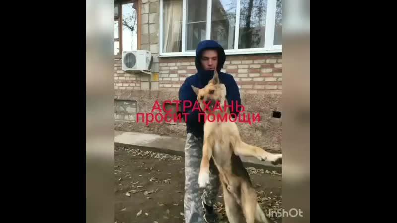 Astrakhan sos InstaUtility 00 CILf3fmnyNj 11