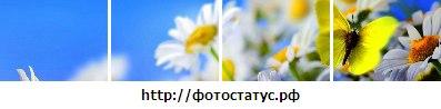 Елена Сороколат: Создано в приложении ФотоСтатус - http://vk.com/app2175066?from_id=1&loc=51d52bfe37fadd40d11cdea1#photostatus
