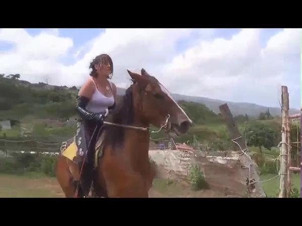 Ponyboy Changeez Chaan 3
