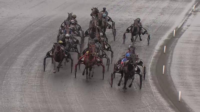Prix d'Amérique Races ZEturf Qualif 3 La course Gu d'Héripré F Nivard