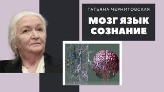 Мозг. Язык. Сознание.  Научный доклад - Татьяны Черниговской