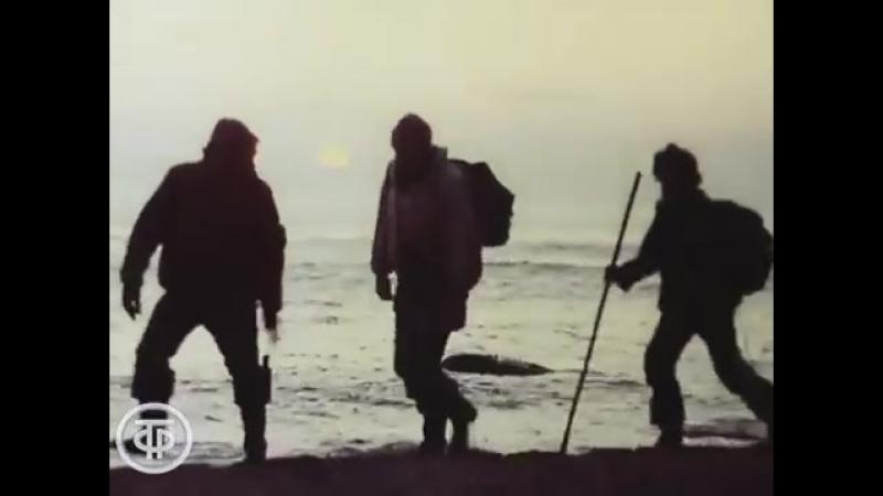1977 Командоры Остров Медный