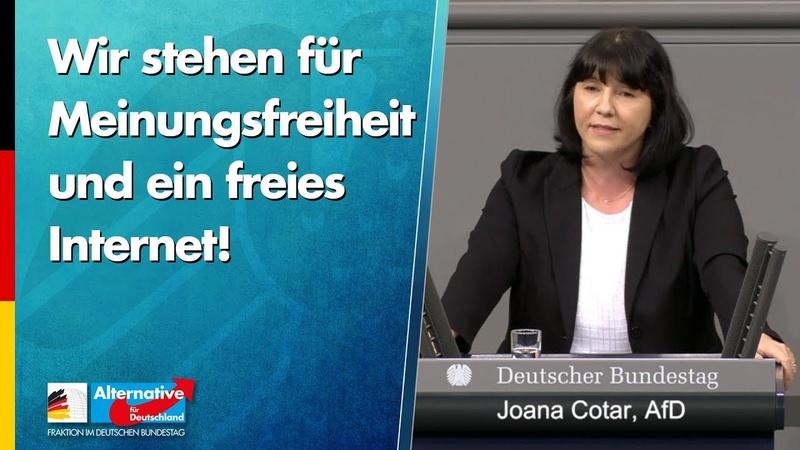 Wir stehen für Meinungsfreiheit und ein freies Internet Joana Cotar AfD Fraktion