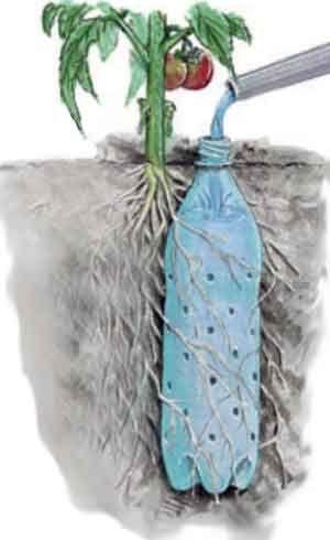 почву во влажном состоянии