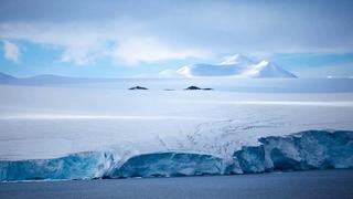 Антарктида – материк вечного льда. Познавательный журнал