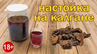 """Калгановка!!! Для """"стояка"""" Рецепт Настойки на Калгане от Канала Свой Среди Своих Кулинария"""