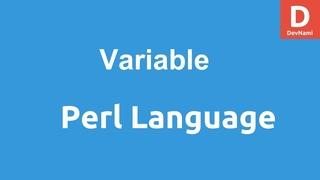 Perl Programming Variables