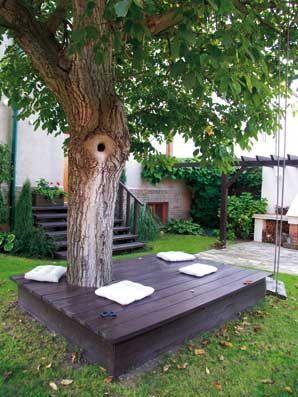 Место отдыха под деревом