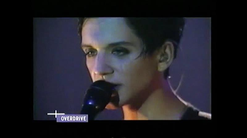 Placebo Taste In Men Overdrive Koln 2000