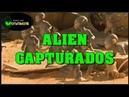UFOS - Aliens capturados vivos essenciaextraterrestre