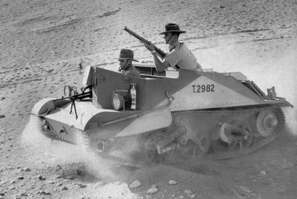 Австралийская легкая кавалерия на бронетранспортёре «Брен Кэрриер» в Северной Африке (7 января 1941 год)