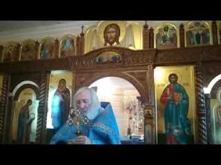 Протоиерей Евгений Соколов. Высшая форма духовности - жертвенность