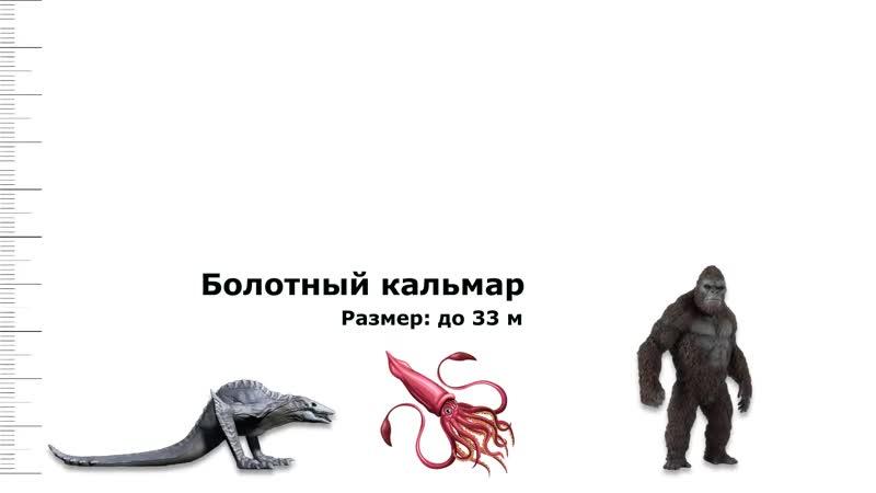 Сравнение титанов из Годзилла 2 Король монстров и Вселенной монстров