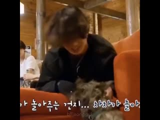 jungkook playing with puppies is the cutest concept ever and you cant change my mind