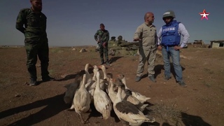 Военная приемка. «Мирные войны в Сирии». Часть 4