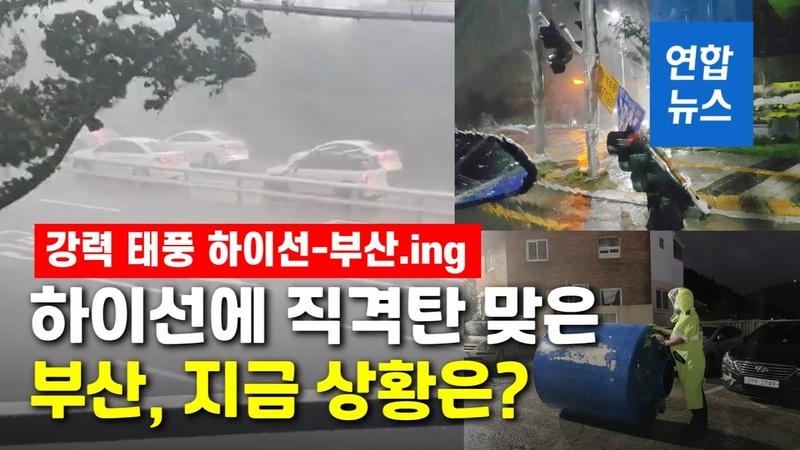 해운대 고층 아파트 흔들…부산 강타한 하이선의 위력 연합뉴스 (Yonhapnews)