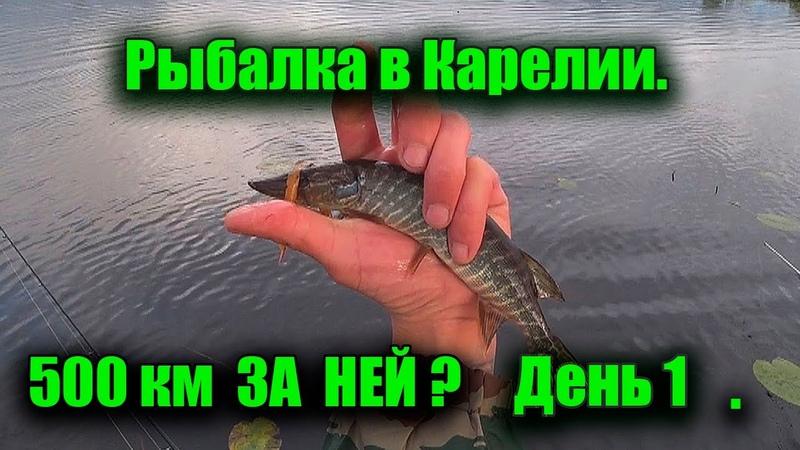 Река Водла Рыбалка в Карелии