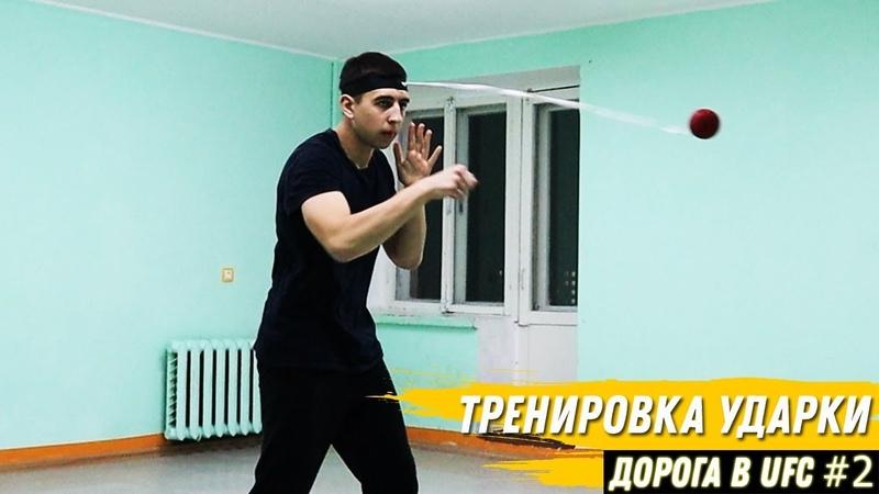 БОКС в ОБЩАГЕ Дорога в UFC 2