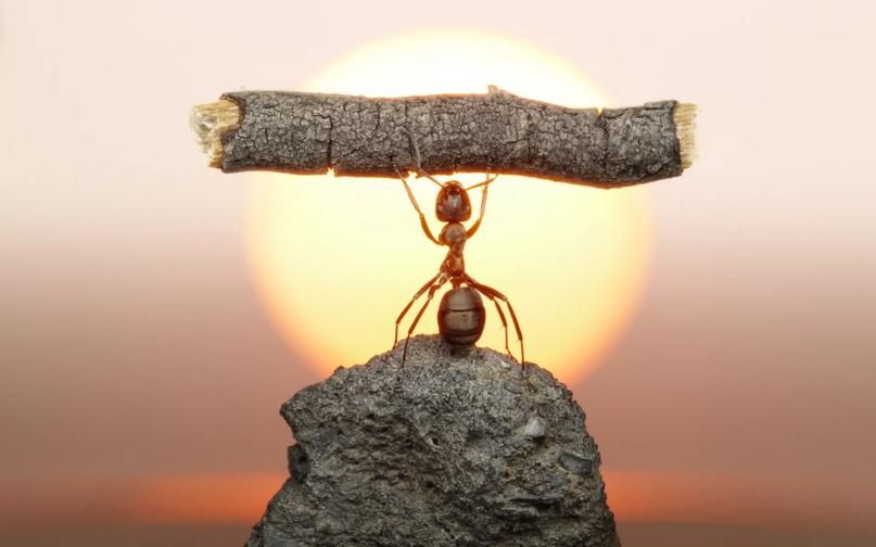 Создавать себе препятствия и преодолевать их? Почему бы и нет.