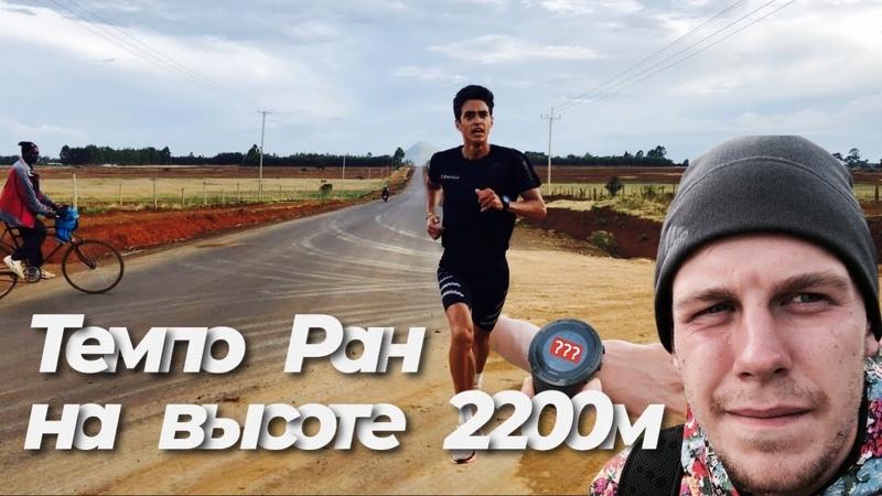 Темповый бег Ринаса Ахмадеева в Кении