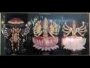 Devi Mahatmyam Full Recitation - Slow Chanting