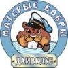 Дайвинг Севастополь  (Крым)-МАТЕРЫЕ БОБРЫ