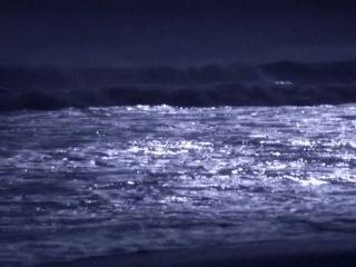 BBC: Голубая планета (1 серия из 8)