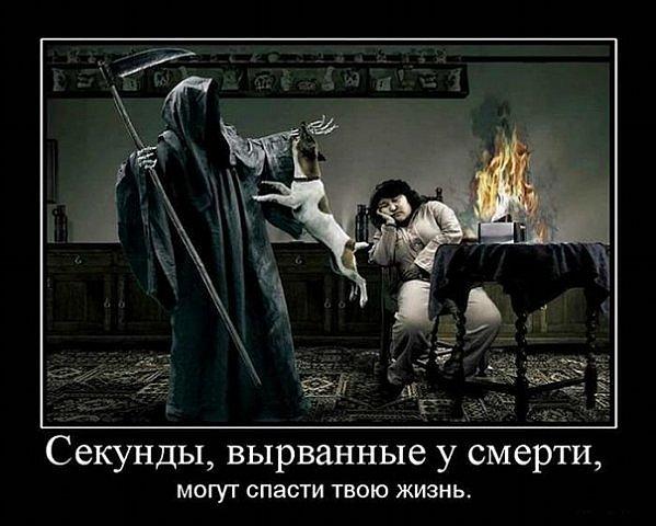 Вася Гайфуллин фото №49