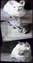 Личный фотоальбом Анастасии Суницы