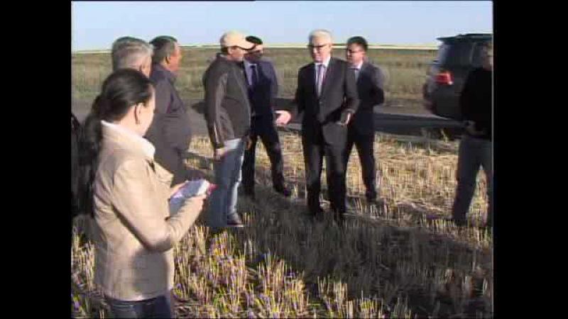 СҚО әкімі Ерік Сұлтанов аудандарға барып күзгі орақ науқанының барысымен танысты