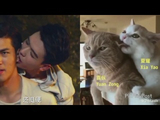 Advance Bravely(盛势) / Biting (licking) his ear. Xia Yao is a cute kitty