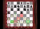 Chess Strategy: Evolution of Style 67 : Reti vs Capablanca - Reti Opening (1.Nf3) (Chessworld)