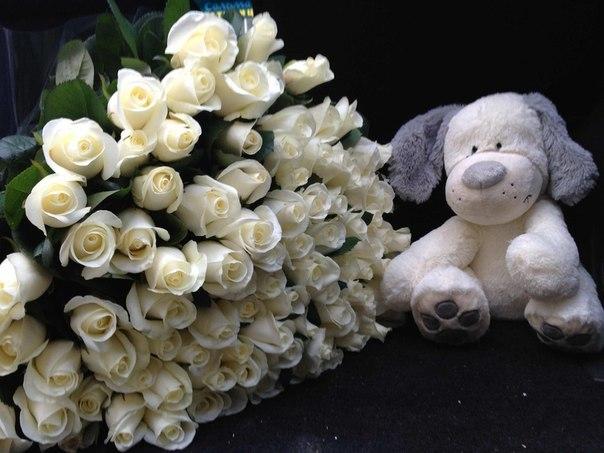 тебя большой букет белых роз фото и большой белый медведь странице