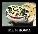 Фотоальбом человека Влады Сергеевой