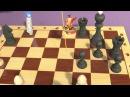 CLG Фиксики - Шахматы | Познавательные мультики для детей, школьников