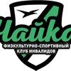 G-Chekhov-Fski-Chayka Kolovsky