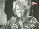 Johnny Hallyday Blues Suede Shoes