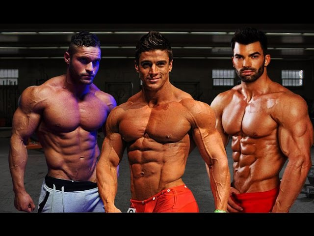 Tavi Castro, Sergi Constance, Jaco De Bruyn - Aesthetic Fitness Motivation
