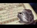 Научные факты Корана - Железо HD