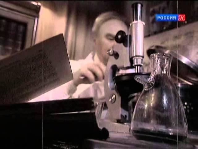 Гении и злодеи. Николай Блохин. За красной чертой. 2012
