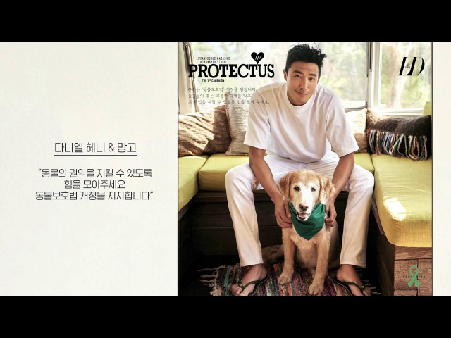 라이프앤도그와 땡큐 스튜디오가 함께 하는 PROTECTUS 캠페인