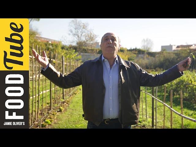 Gennaro finds an Amazing Italian Allotment Gennaro Contaldo
